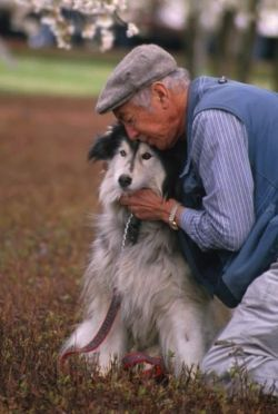 dog-elderly2.jpg